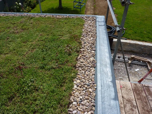 green-roof-landscaping